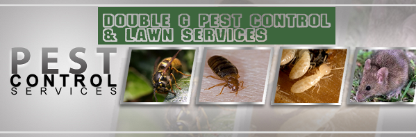 Double G Pest Control Banner1